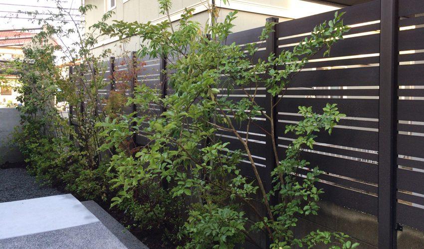 植栽した植木と目隠しフェンスでリラックスできる雑木のお庭